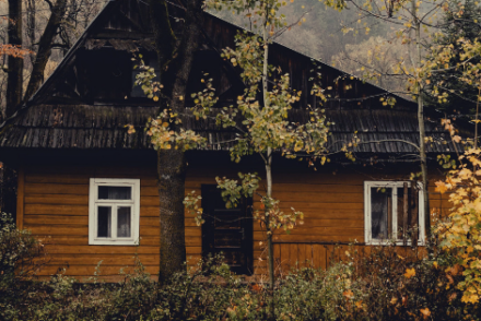 cabin surrounded by autumn foliage